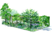 Hereford specialist supports Chelsea Flower Show display