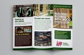 Timber guide released by Grown in Britain