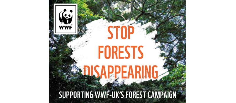Arbor Forest Products joins WWF to tackle forest destruction