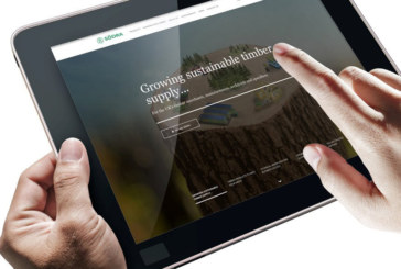 Södra unveils digital hub for timber customers