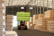 Södra Wood comments on 2020 timber supply