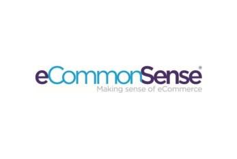 eCommonSense reports on fastest ever trade website turnaround