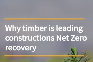 New report from CTI talks timber and the Roadmap to Recovery